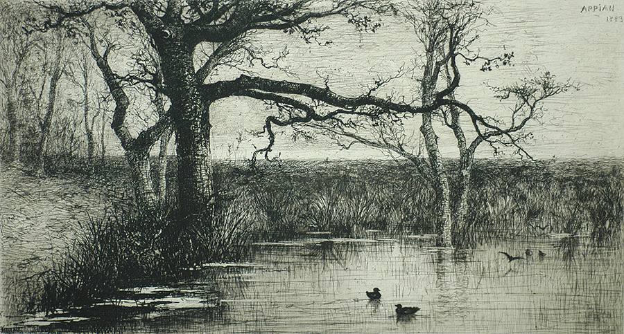 Pond with Ducks (Etang avec Canards) - ADOLPHE APPIAN - etching