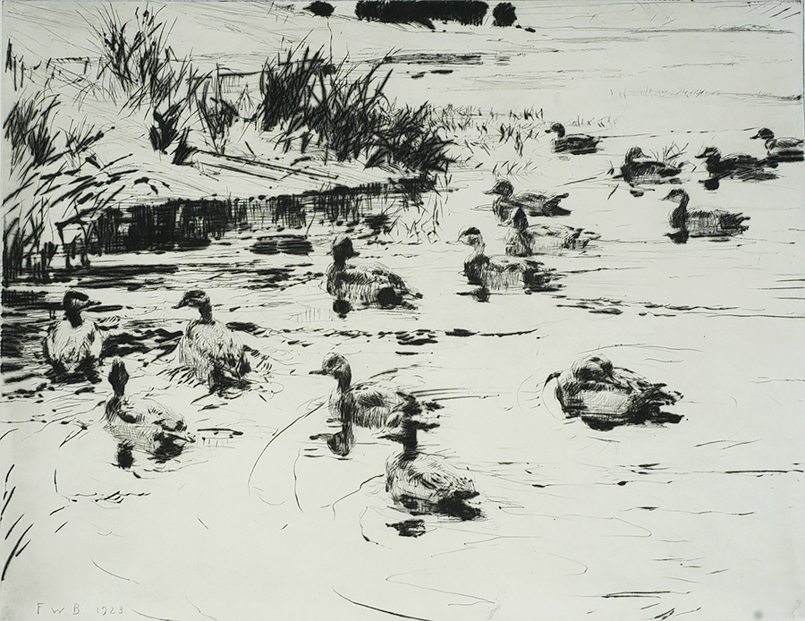 Ducks at Play - FRANK BENSON - drypoint