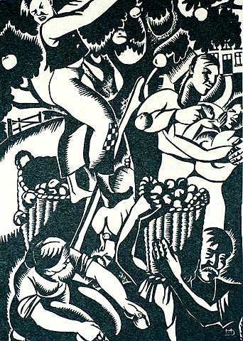 Apples for Cider - NELLY DEGOUY - woodcut