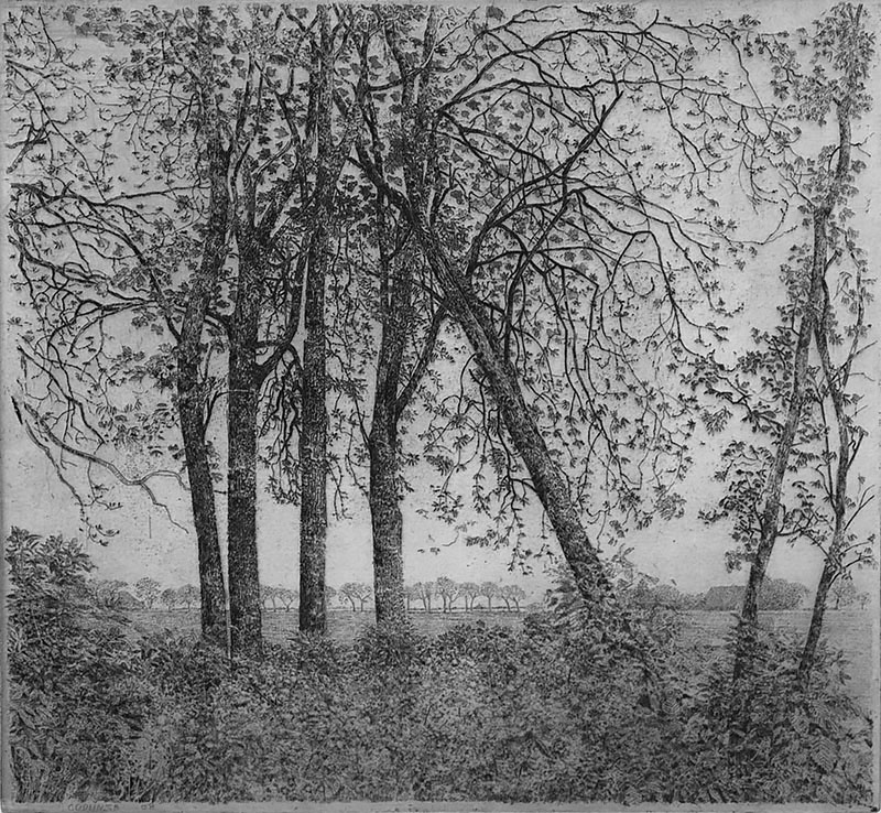 Uitzicht Vanuit de Tuin in Godlinze (View from the Garden in Godlinze) - CHARLES DONKER - etching