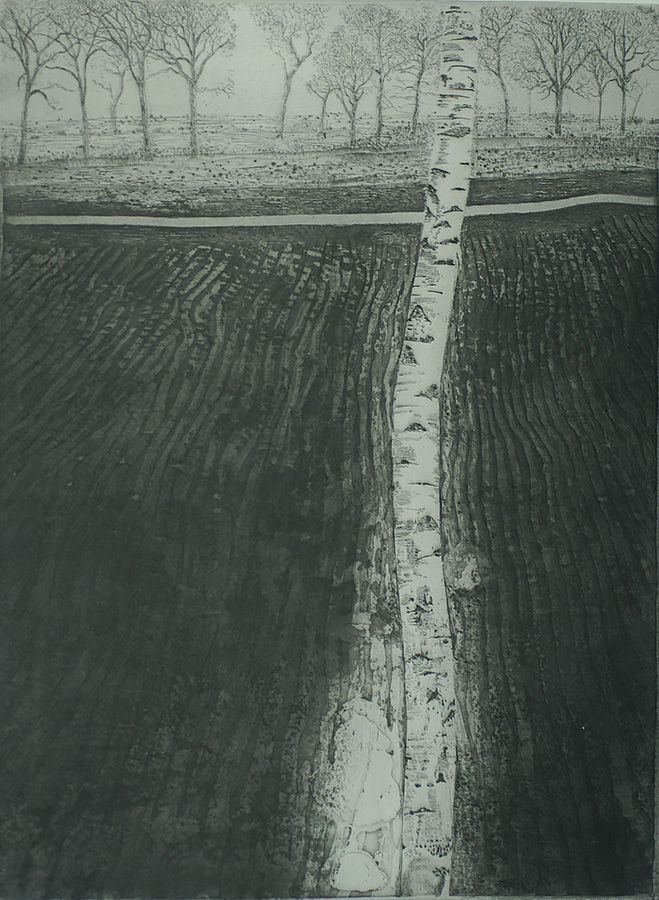 Berk III (Birch III) - CHARLES DONKER - etching and aquatint