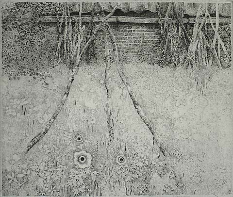 Groningen, Tuin Anemoon - CHARLES DONKER - etching