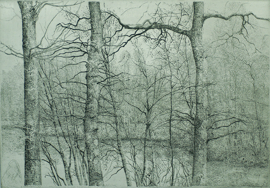 Fort met Drie Eiken (Rhijnauwen) (Fort with three Oak Trees) - CHARLES DONKER - etching