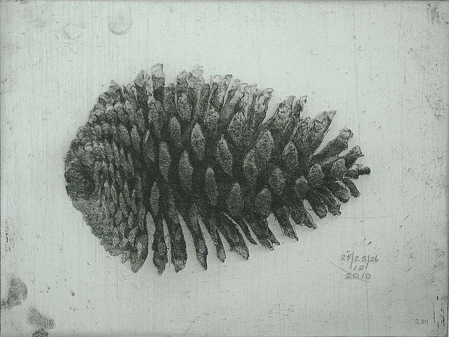 Large Pinecone III (Grote Dennenappel III) - CHARLES DONKER - etching