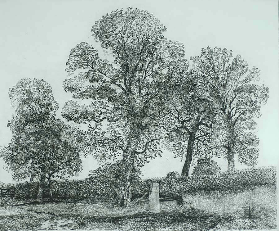 Water Well in High Trees (Waterput bij hoge Bomen) - CHARLES DONKER - etching