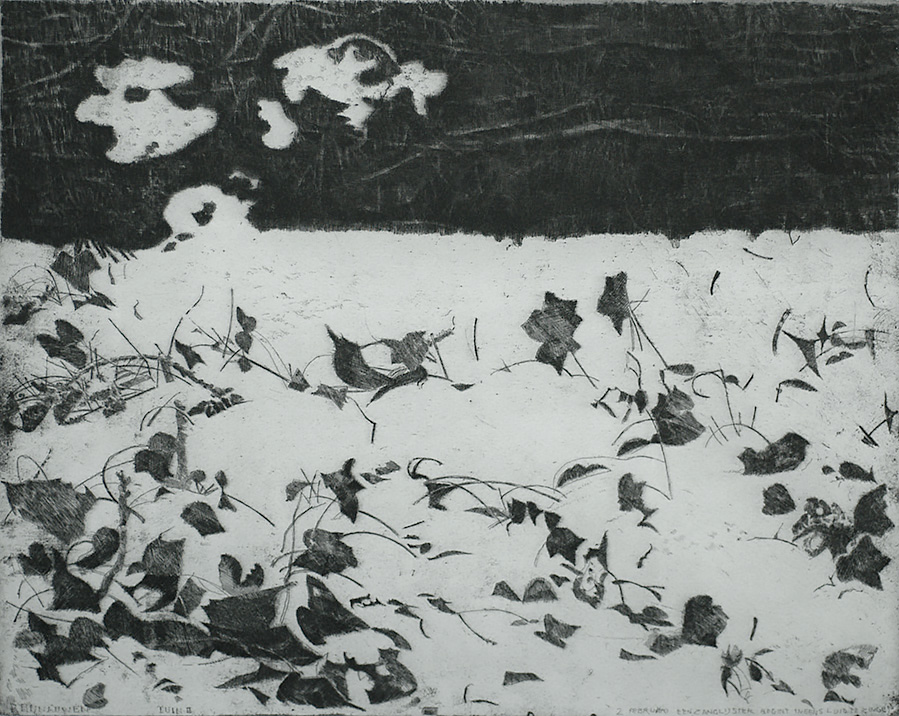 Tuin in de Sneeuw II (Tuin II)  (Garden in the Snow II) - CHARLES DONKER - etching