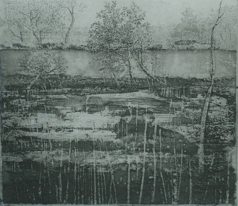 Veenlandschap (Veen) - CHARLES DONKER - etching and aquatint