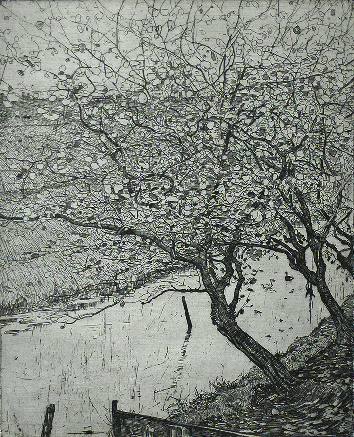 Appelboomen aan den Slootkant (Apple trees along the side of a Ditch) - PIETER DUPONT - etching