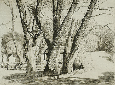 Spring Valley Willows - DANIEL GARBER - etching