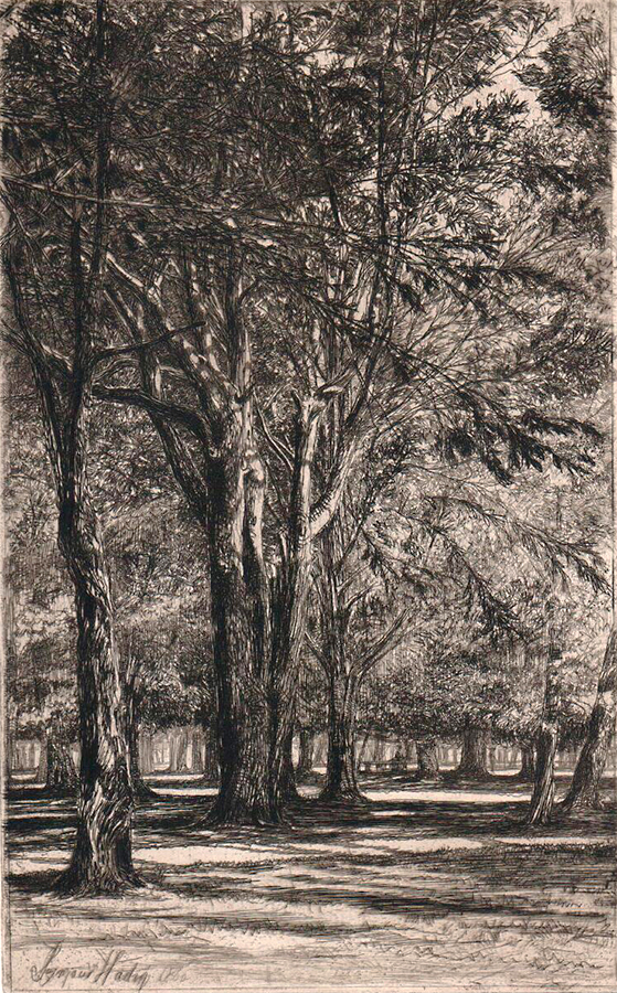 Kensington Gardens, No. II - SEYMOUR HADEN - etching and drypoint