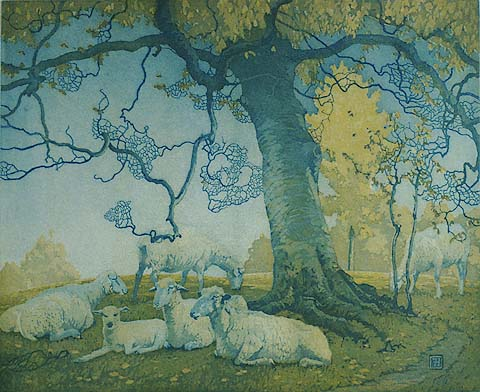 Beech Tree, York Hills - FRED S. HAINES - etching and aquatint printed in colors