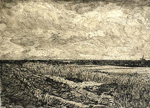 Landscape in Overijssel - GERHARD C. HAVERKAMP - etching