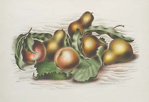 Fruit Forms - ALBERT  HECKMAN - lithograph printed in colors
