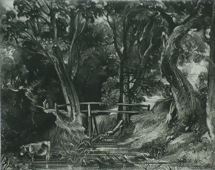 A Dell, Helmingham Park, Suffolk - DAVID LUCAS - mezzotint