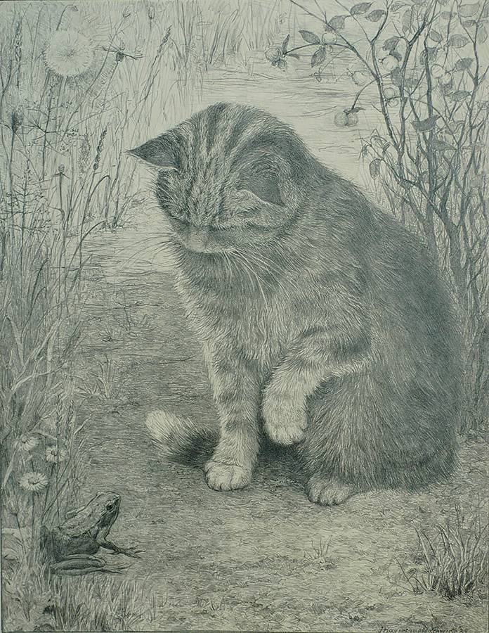 Cat with a Frog - JOHANNA G. HAVERKAMP-MACHWIRTH - lithograph