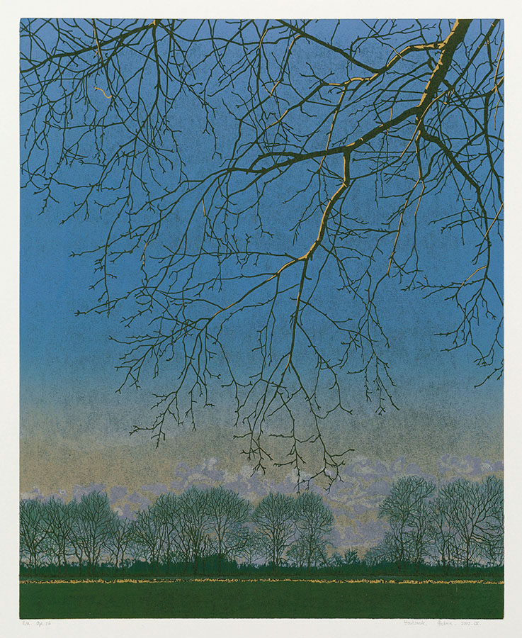 Landscape 2002-IV - GRIETJE POSTMA - woodcut printed in colors