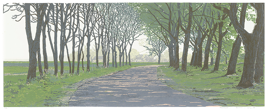 Landscape 2014-IV - GRIETJE POSTMA - woodcut printed in colors