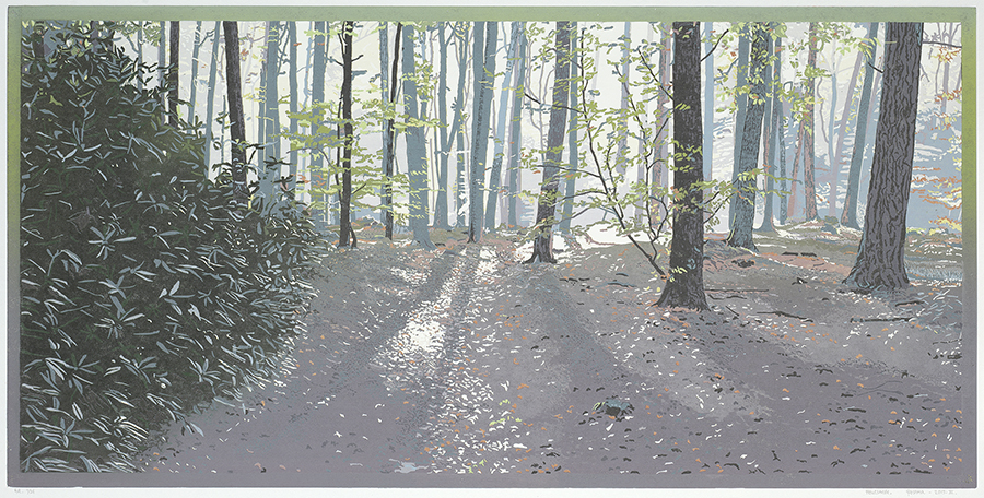 Landscape 2015-III - GRIETJE POSTMA - woodcut printed in colors