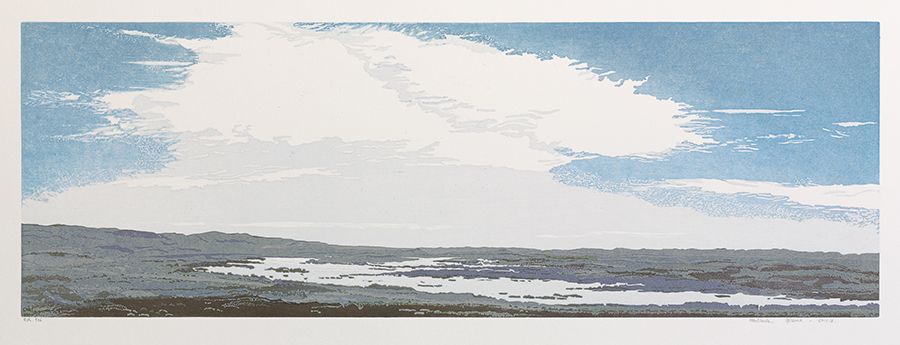 Landscape 2015-V - GRIETJE POSTMA - woodcut printed in colors