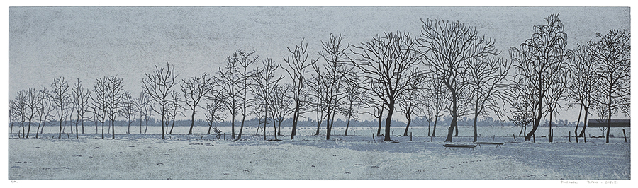 Landscape 2017-II - GRIETJE POSTMA - woodcut printed in colors