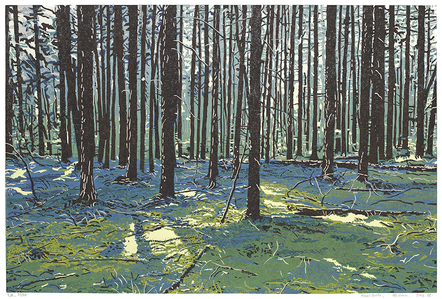 Landscape 2017-IV - GRIETJE POSTMA - woodcut printed in colors