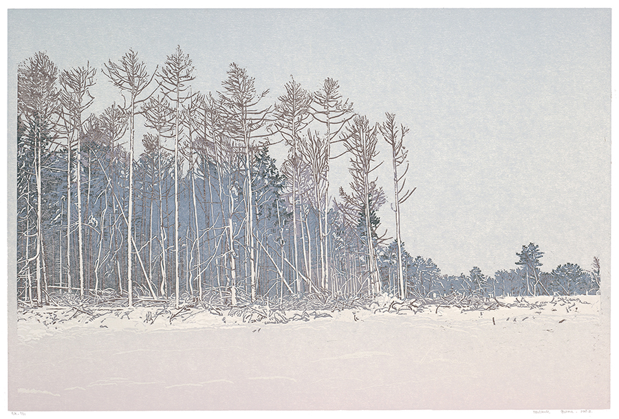 Landscape 2018-II - GRIETJE POSTMA - woodcut printed in colors