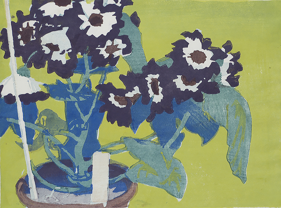 Cineraria - MABEL ROYDS - woodcut printed in colors