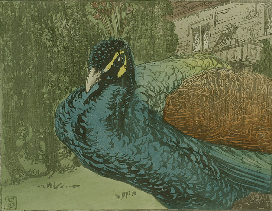 Peacock - ALLEN W. SEABY - woodcut printed in colors