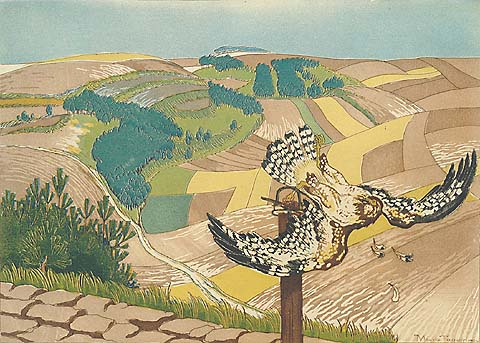 Bird of Prey - MAURICE TAQUOY - etching and aquatint printed in colors