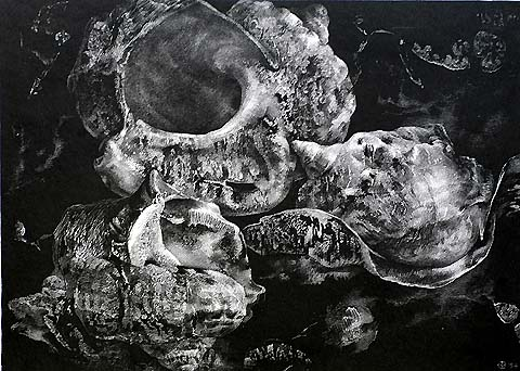 The Three Shells II - AART VAN DOBBENBURGH - lithograph