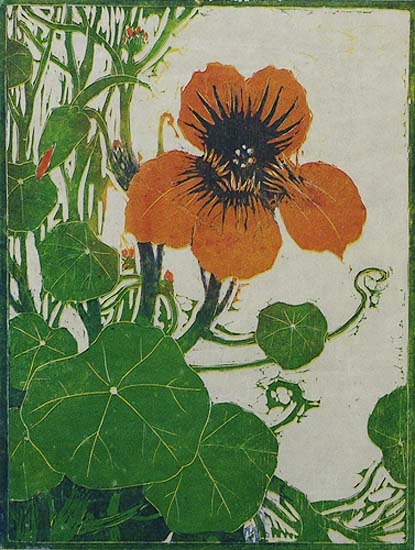 Nasturium - HENRI VERSTIJNEN - woodcut printed in colors