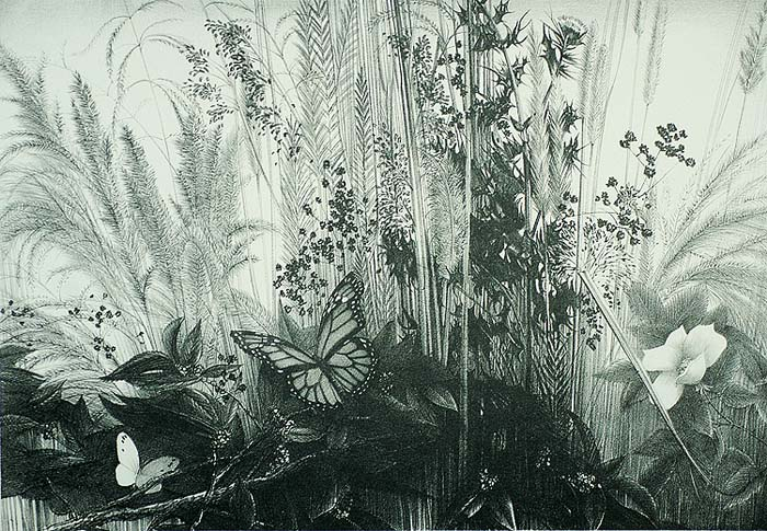 Roadside Garden - STOW WENGENROTH - lithograph