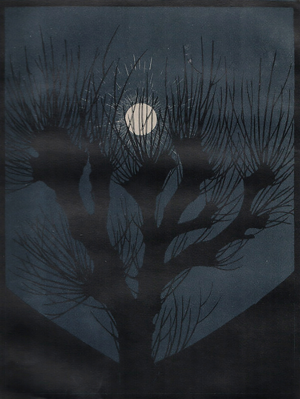 Moonlit Night (Mannacht) -  ANNA JULIE DE GRAAG - woodcut printed in colors