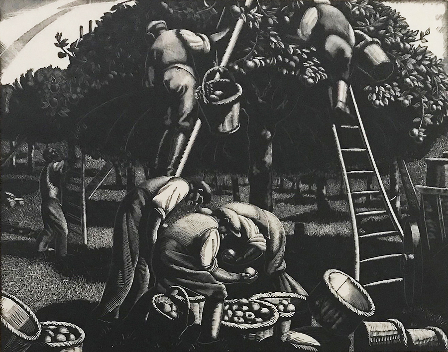 Apple Picking:  September - CLARE LEIGHTON - wood engraving