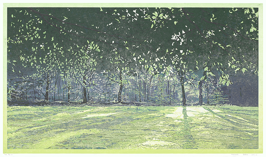 Landscape 2012-I - GRIETJE POSTMA - woodcut printed in colors