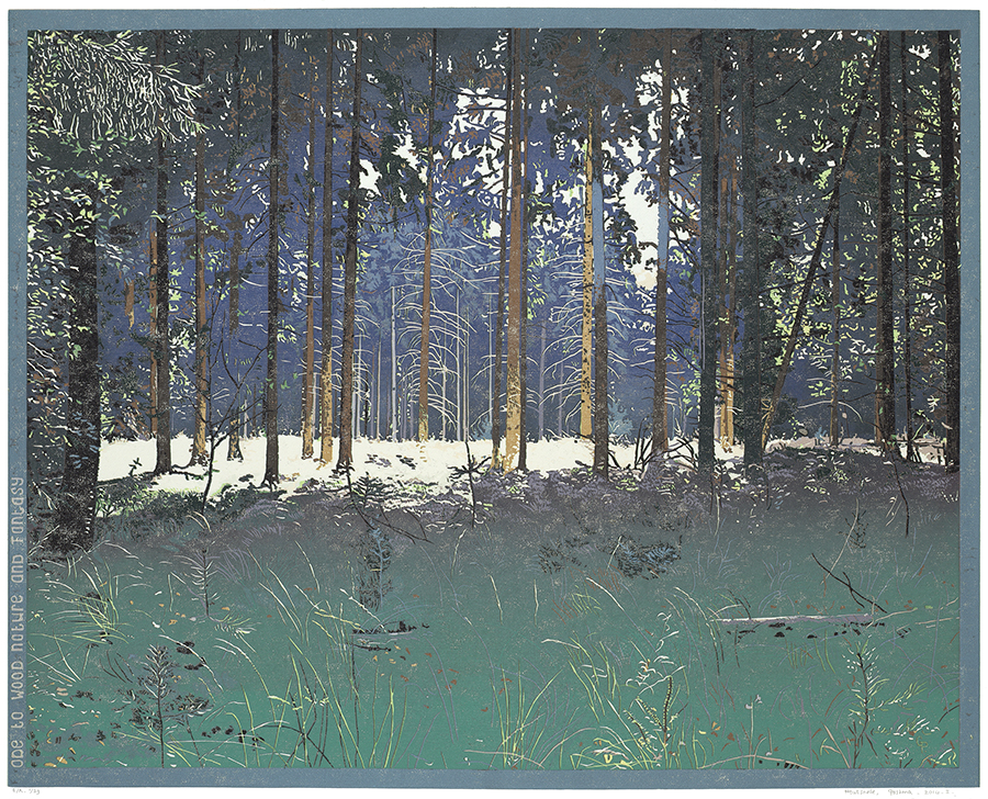 Landscape 2014-I - GRIETJE POSTMA - woodcut printed in colors