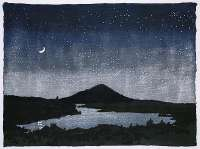Night Scene -  WELLIVER