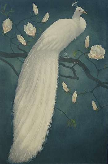 White Peacock on a Magnolia Branch (Witte Pauw op een Magnoliatak) - FRANS EVERBAG