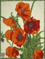 Floral Study (Poppies) -  KOCH-AMBERG