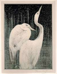 Two Egrets -  VAN HOYTEMA