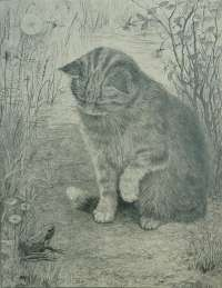 Cat with a Frog -  HAVERKAMP-MACHWIRTH
