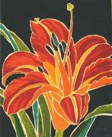 Day Lily -  RICE