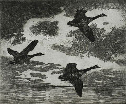 Cloudy Dawn - FRANK BENSON - etching