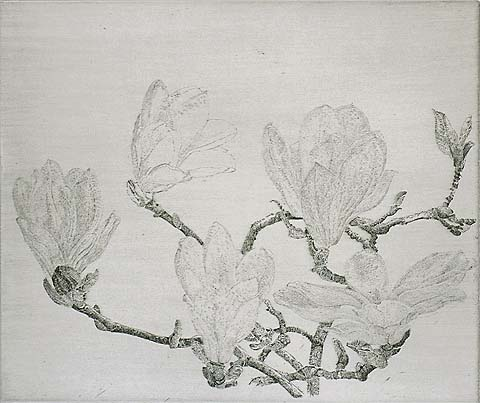 Magnolia (IA) - CHARLES DONKER - etching