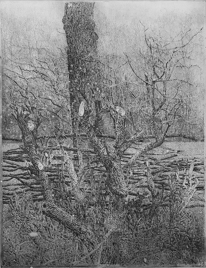 Vossegatse Dijk 4, Rhijnauwen - CHARLES DONKER - etching and aquatint