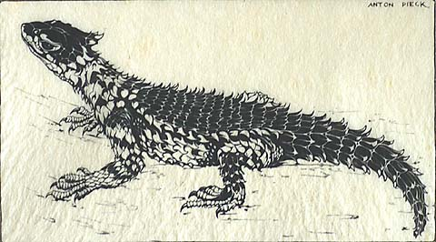 Lizard - ANTON F. PIECK - wood engraving