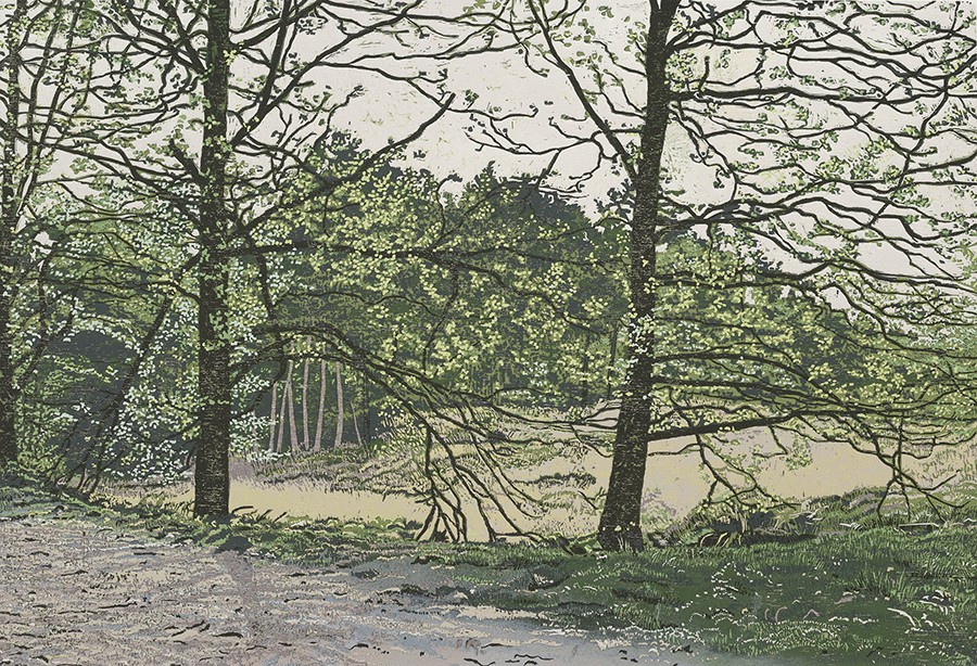Landscape 2007-II - GRIETJE POSTMA - woodcut printed in colors
