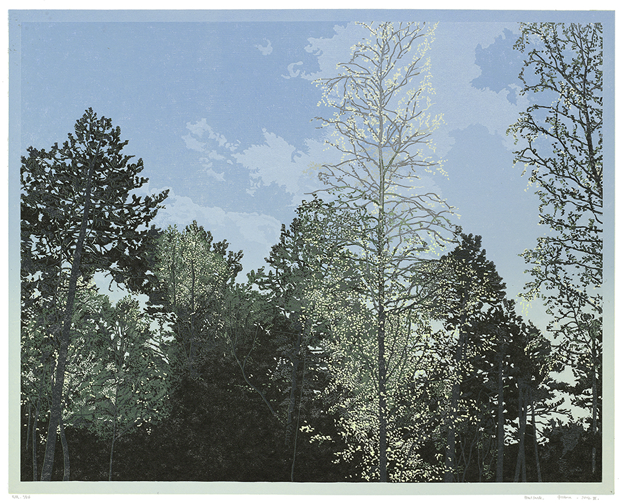 Landscape 2014-VI - GRIETJE POSTMA - woodcut printed in colors