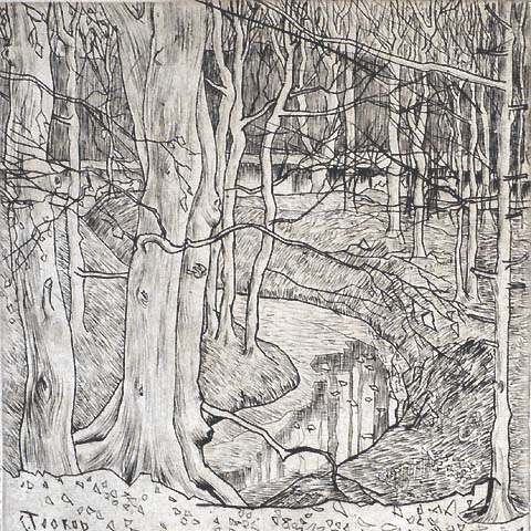 In the Woods - JAN TOOROP - drypoint