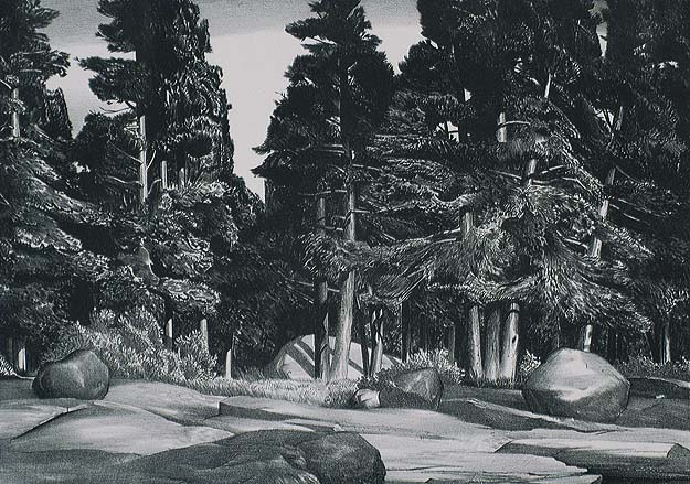 Deep Forest - STOW WENGENROTH - lithograph
